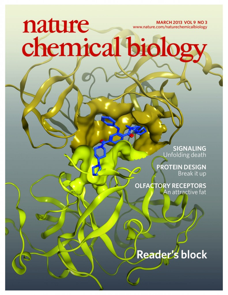 Cover _Nchembio0313 2 PDF - Center for Integrative Chemical